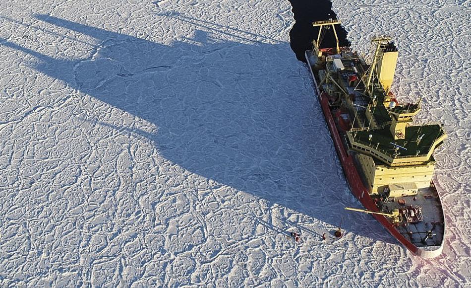 """Das """"Drachenhauteis"""" wurde von Forschern an Bord des Nathaniel B Palmer Forschungsschiffs entdeckt. Die gegenwärtige Reise begann Anfang April, nachdem sich die meisten anderen Antarktis-Expeditionen bereits in wärmere Gebiete zurückgezogen haben. (Bild: IMAS)"""