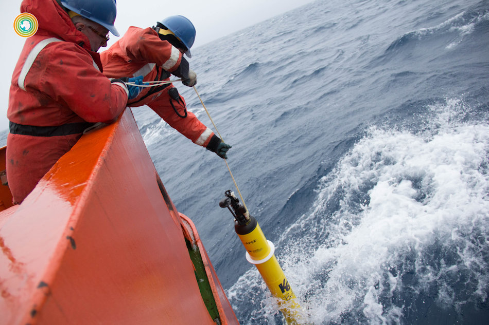 Die Drohnen werden von Forschern zu Wasser gelassen und sind danach autonom unterwegs, um Daten zu sammeln. Nach einer festgelegten Zeit werden sie dann wieder eingesammelt, damit sie nicht als Müll umhertreiben. Bild Greta Shum, UW
