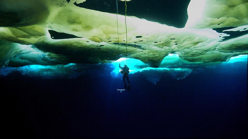 Faszinierende Unterwasserwelt: Eingeschlossene Algen färben das Meereis, das wiederrum das Licht bricht und filtert. Die Taucher entdeckten Schwärme jungen Krills vor allem tagsüber dort, wo übereinander geschobene Eisstücke Höhlen und Spalten bildeten. Foto: Jerome Maison, AWI