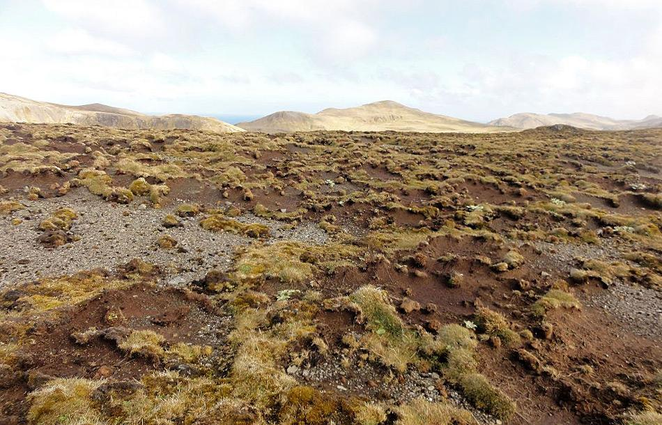 Durch das Absterben der Pflanzen wird der Boden und damit die Nährstoffe von den stärkeren Winden wegerodiert und hinterlässt einen kahle Narbe in der Landschaft. Bild Dana Bergstrom