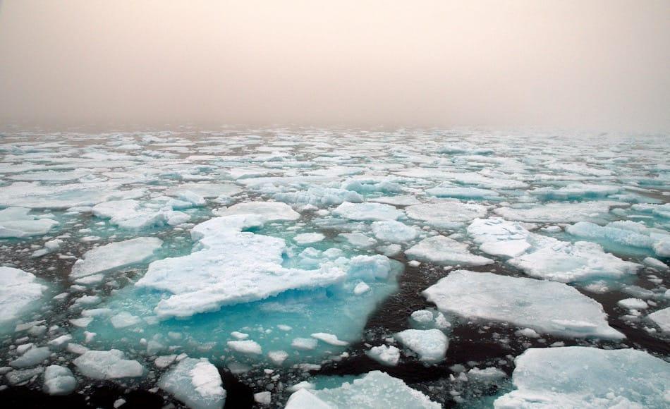 Die Grönlandsee ist eine 1.2 Mio. Quadratkilometer grosse Wasserfläche, die ozeanographisch sehr wichtig ist. Hier bilden sich die Tiefenwasser, die bis in die Antarktis strömen. Dadurch werden die globalen Strömungssysteme überhaupt angetrieben. Bild: Michael Wenger