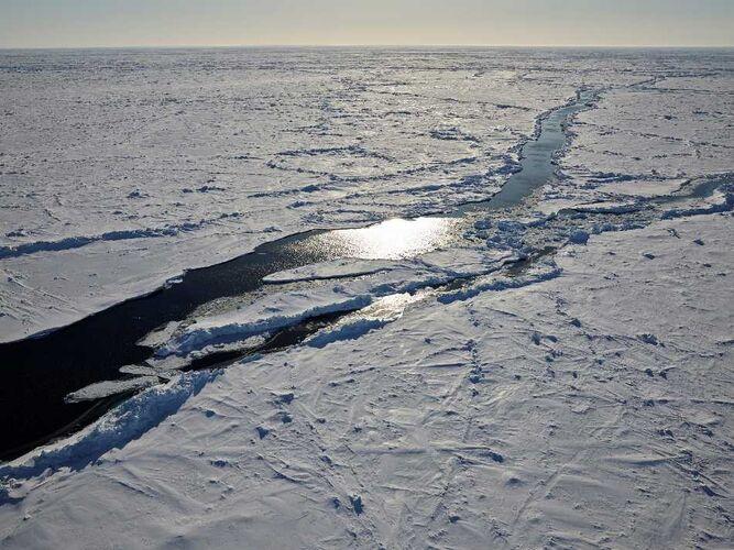 Arktisches Meereis im April 2020 Foto: Alfred-Wegener-Institut / Michael Gutsche